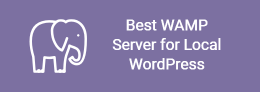 Laragon - Best WAMP Server for Local WordPress