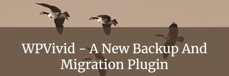 WPVivid – A New Backup And Migration Plugin