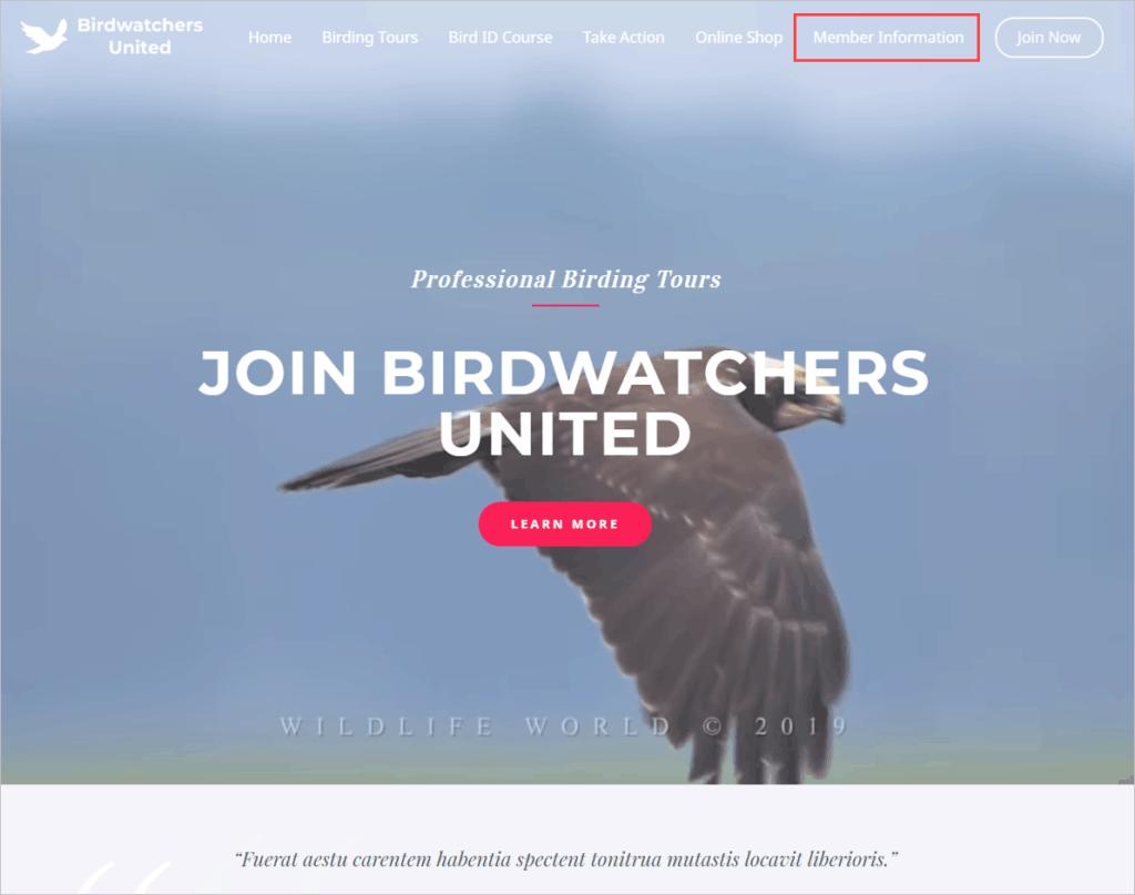 demo home page