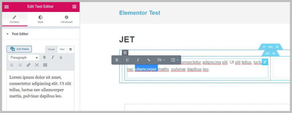 Elementor Text Widget