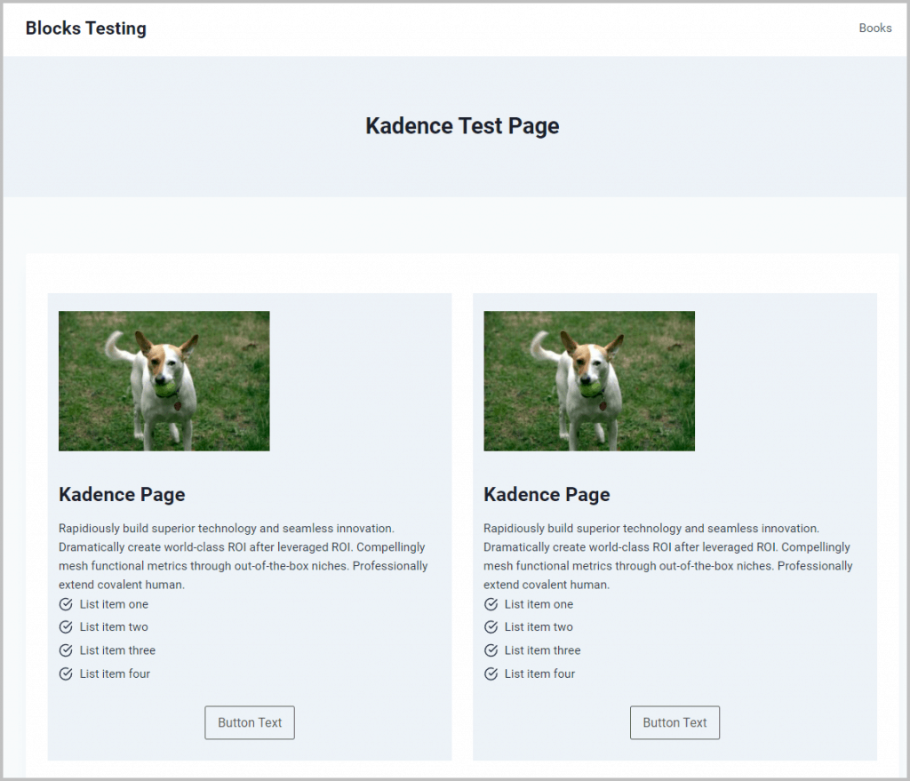 Kadence Test Home Page