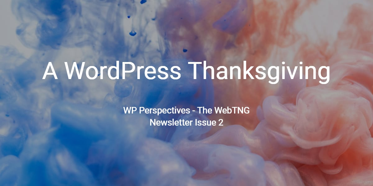 WP Perspectives Issue 2