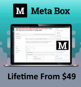meta box lifetime